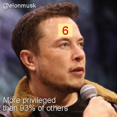 Intersectionality Score for @elonmusk