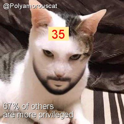 Intersectionality Score for @Polyamorouscat